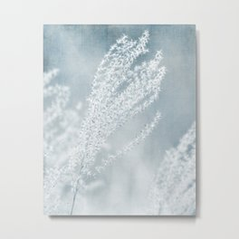 GONE TO SEED - FLUFFY SEEDS Metal Print