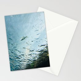 Fish under water Stationery Cards