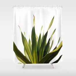 Palm Leaves #5 Shower Curtain