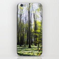 Ruegen-Forest iPhone & iPod Skin
