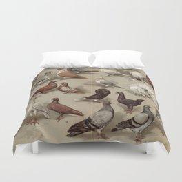 Vintage Pigeon Breeds Chart Duvet Cover
