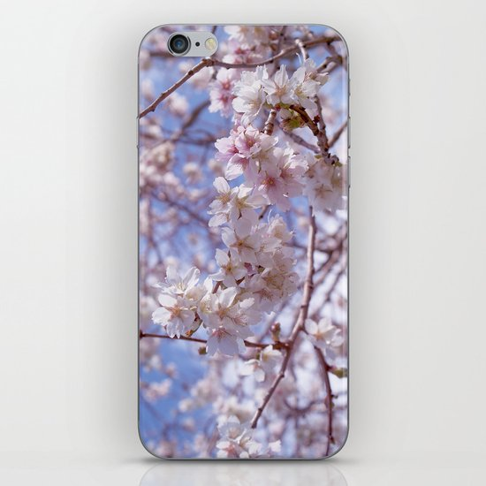 Blossom, Bloomin Blossom.  iPhone & iPod Skin