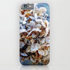 Frozen Poetry iPhone 6s Slim Case