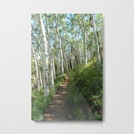 Jud Weibe Trail Telluride Metal Print