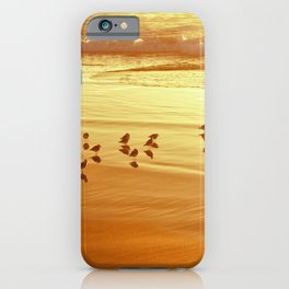 Golden Shore by Reay of Light iPhone Case