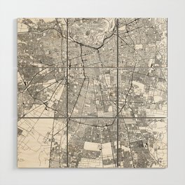 Santiago White Map Wood Wall Art