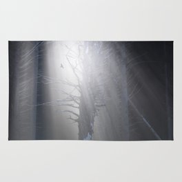 Sunrise in the Trump Forets. Rug