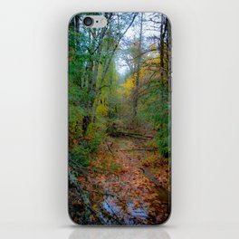 Rainy Day in the PNW iPhone Skin