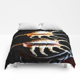 Shell We Dance, Da Da Da... Comforters