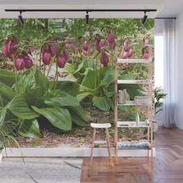 New England Wild Orchid Lady Slipper Flowers Wall Mural