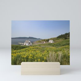 Small houses on Bonaventure Island. Gaspésie, Québec, Canada. Mini Art Print