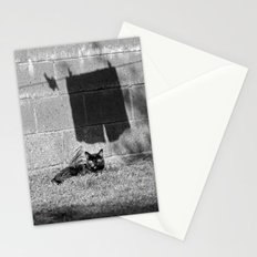 The cat and the pants Stationery Cards