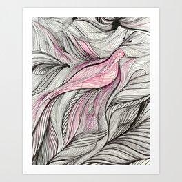 Pink Dove Art Print