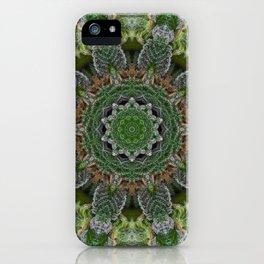 Green Queen iPhone Case