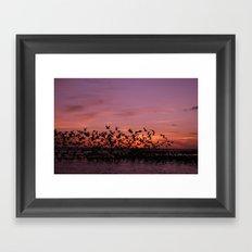 Volare Framed Art Print