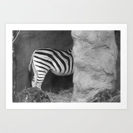 Oregon zoo Art Print