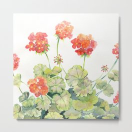 Geranium Watercolor  Metal Print