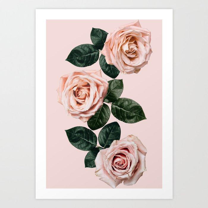 Pretty In Pink Kunstdrucke