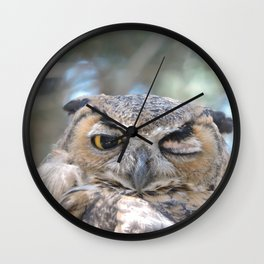 Owl Wink Wall Clock