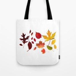Autumn Rainbow, Fallen Leaves Tote Bag