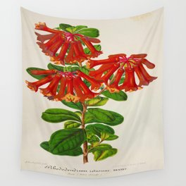 Rhododendron Retusum Vintage Botanical Floral Flower Plant Scientific Illustration Wall Tapestry