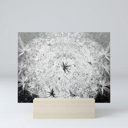 Snowball Mini Art Print