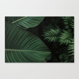 Tropical Beauty // Tropical Boho Leaves meets Minimalist Patterns Canvas Print