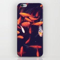 feed me iPhone & iPod Skin