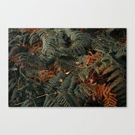 Dark Embrace Canvas Print