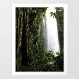 Misol Ha Waterfall Art Print