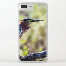Colorful Green Heron Perched Clear iPhone Case