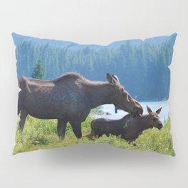 Mother moose & calf at Maligne Lake in Jasper National Park Pillow Sham