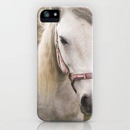 Meditating Horse iPhone Case