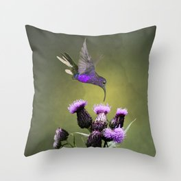 Violet Sabrewing Hummingbird and Thistle Throw Pillow