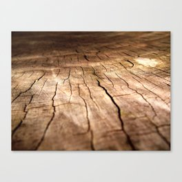Cracked up Canvas Print