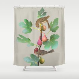 Rosefinches in Fig Tree Shower Curtain
