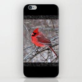 The Snow Cardinal iPhone Skin
