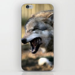 The wolf is hungry iPhone Skin