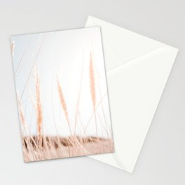 Dune Grass Photo   Nature Photography   Overexposed Dune Grass In Soft Light Stationery Cards