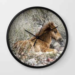 Salt River Colt Taking a Rest Wall Clock