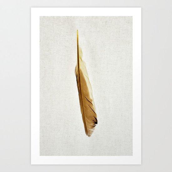 Feather Photograph: Suave Art Print