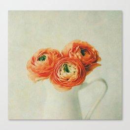 Orange Ranunculus Textured  Canvas Print