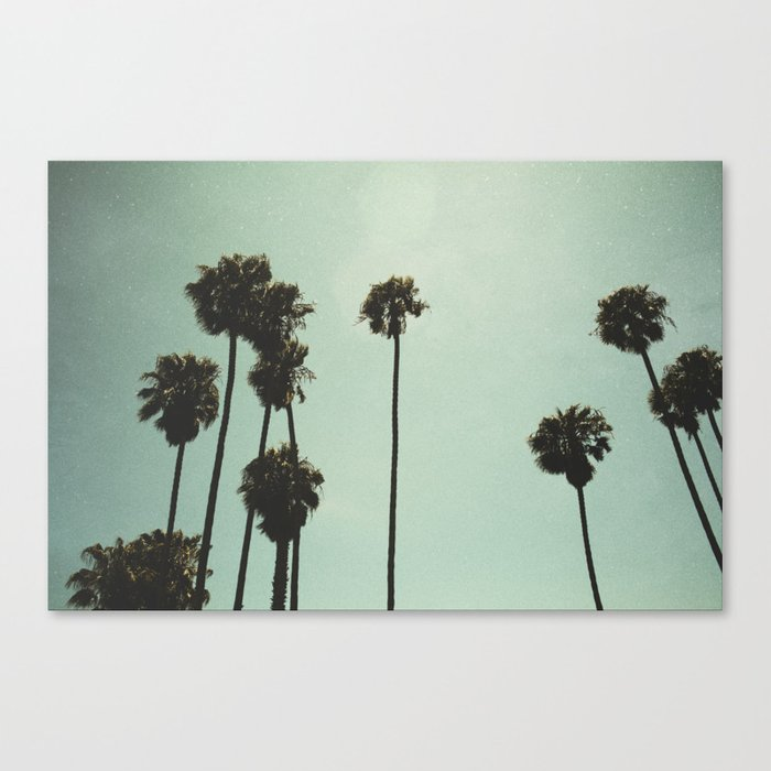 Space and the palms Canvas Print