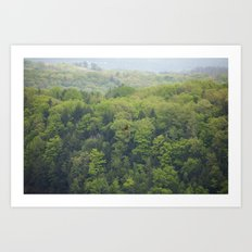 Flying Above the Tree Tops - Spring Trees  Art Print