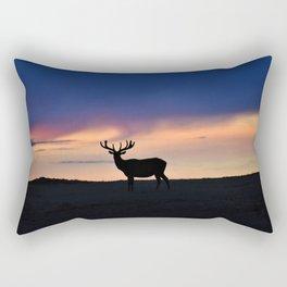 Sunset Beauty Rectangular Pillow