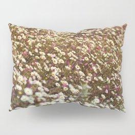 Daisy Fields Pillow Sham