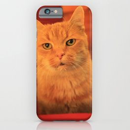 Cat in Red with milk mustache iPhone Case