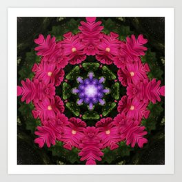 Hot Pink Gerbera And Cool Blue Viola Kaleidoscope Art Print