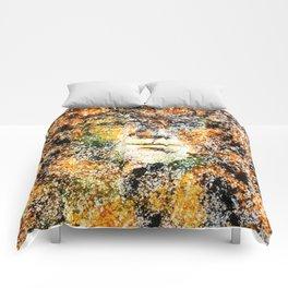 Timid Comforters