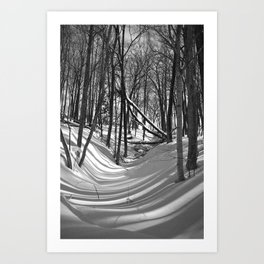 Falling Shadows Art Print